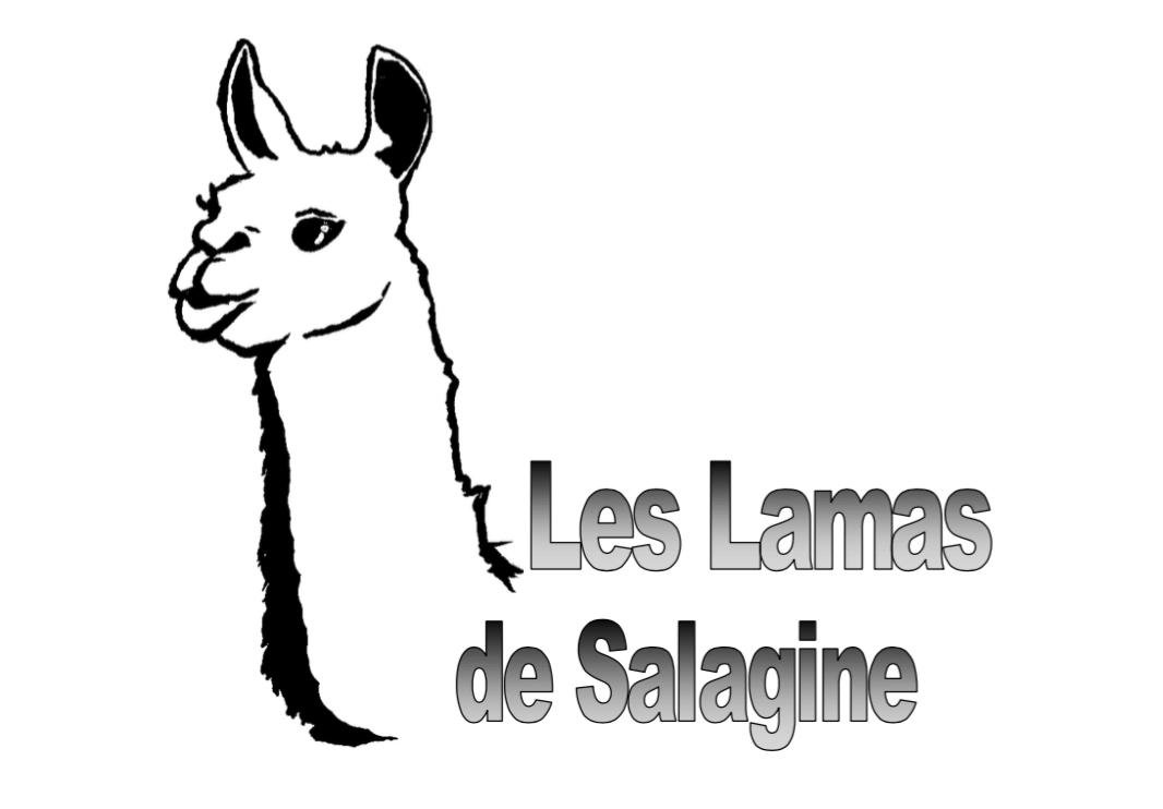 Les lamas de Salagine